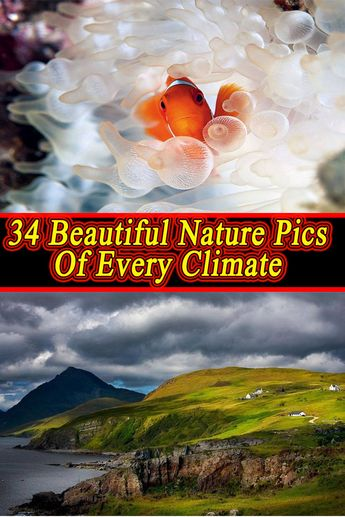 34 Beautiful Nature Pics Of Every Climate