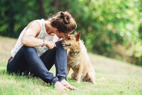 What Dog Breed You Should Get According To Your Sign - What Dog Breed You Should Get According To Your Sign - Photos