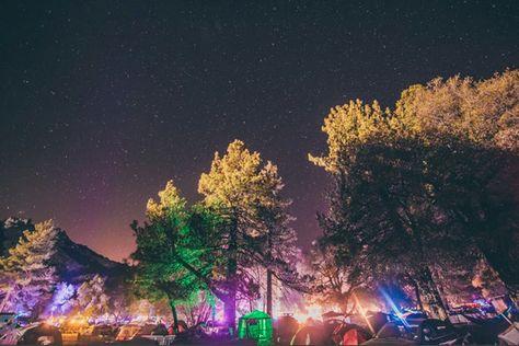 Festivals to Go to Around the World | Desert Hearts