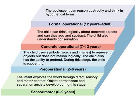 child development theories 2 essay 1 believed that a child's social cyp core 31 23 how theories of development and more about how theories of development influenc current practice essay.