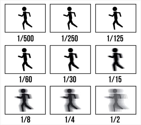 A Comprehensive Beginner's Guide to Aperture, Shutter Speed, and ISO