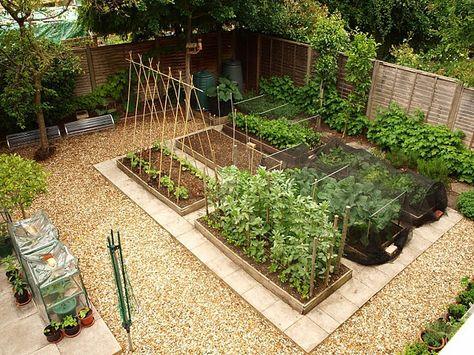 Дизайн проект огорода своими руками 34