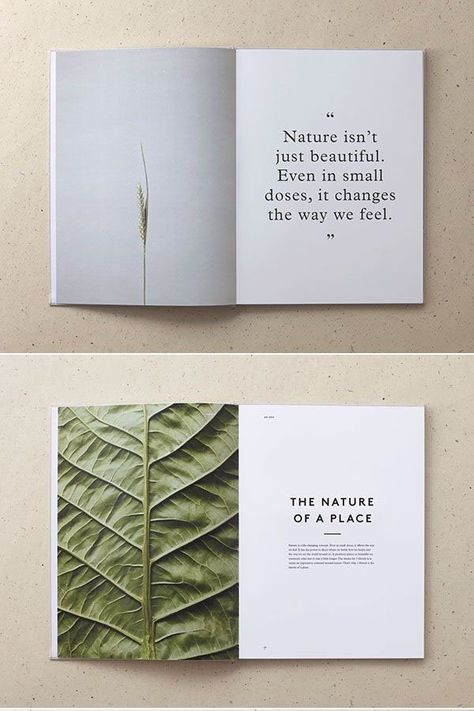 Minimalist design: 25 beautiful examples and practical tips