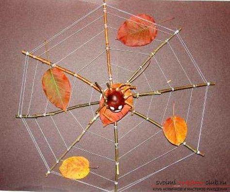 Паук поделка из природного материала
