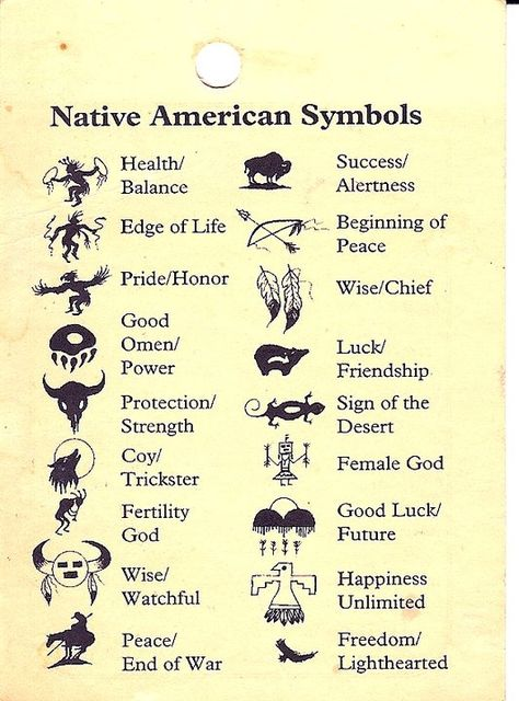 Animal Symbols And Meanings List Dinocrofo