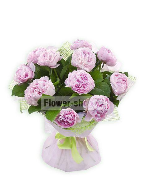 Цветы пионы купить в спб цена send flowers доставка цветов