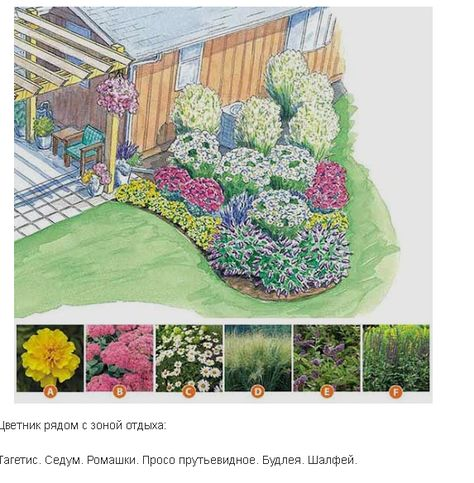 Цветники и клумбы своими руками на даче фото схемы
