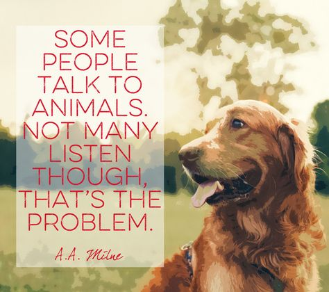 Words by A.A. Milne - Quotes That Will Melt Every Animal Lover's Heart - Photos