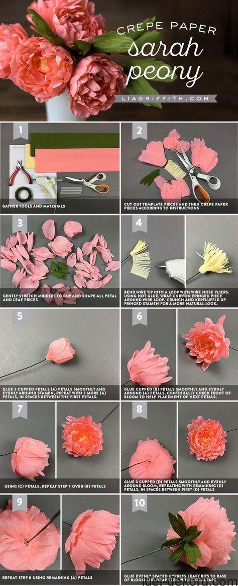 Цветы пионы из гофрированной бумаги пошаговое