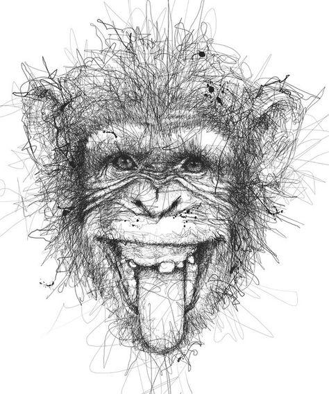Monkey drawings in pencil