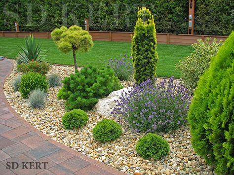 Ландшафтный дизайн сада с хвойниками