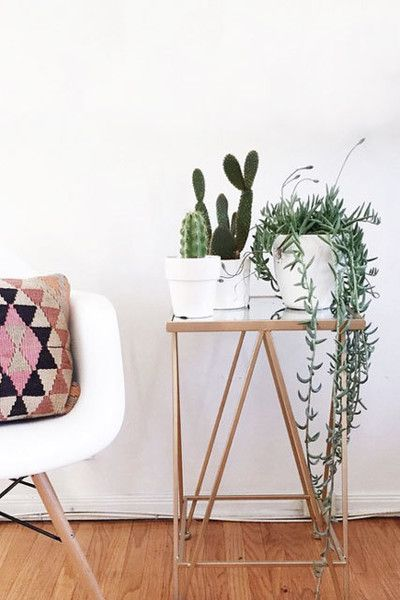 Don't: Go Straight For The Floor - Do's and Don't's Of Decorating With Plants - Photos