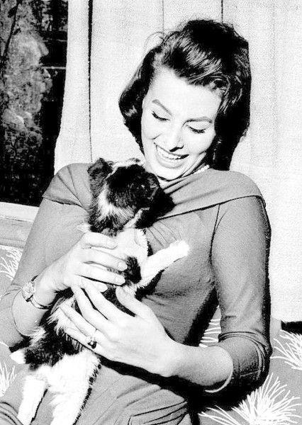 Sweetness - Rare and Magnificent Photos of Sophia Loren - Photos