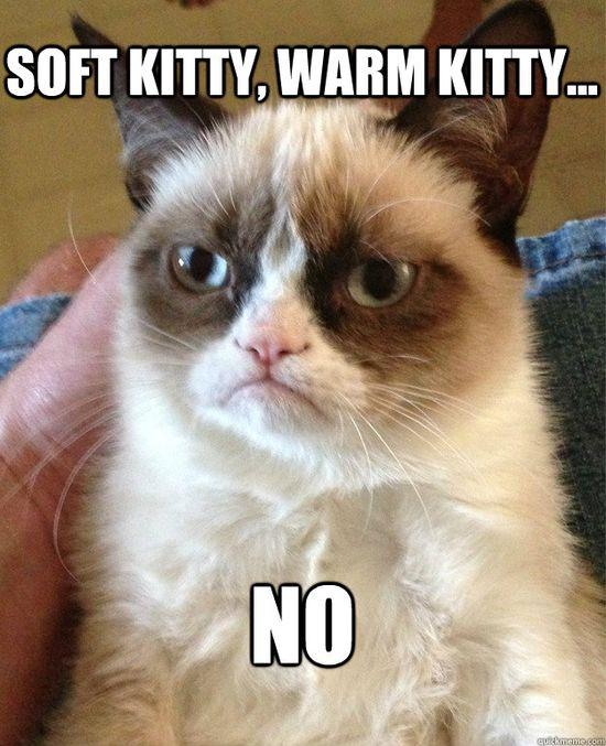 soft kitty warm kitty no - Grumpy Cat