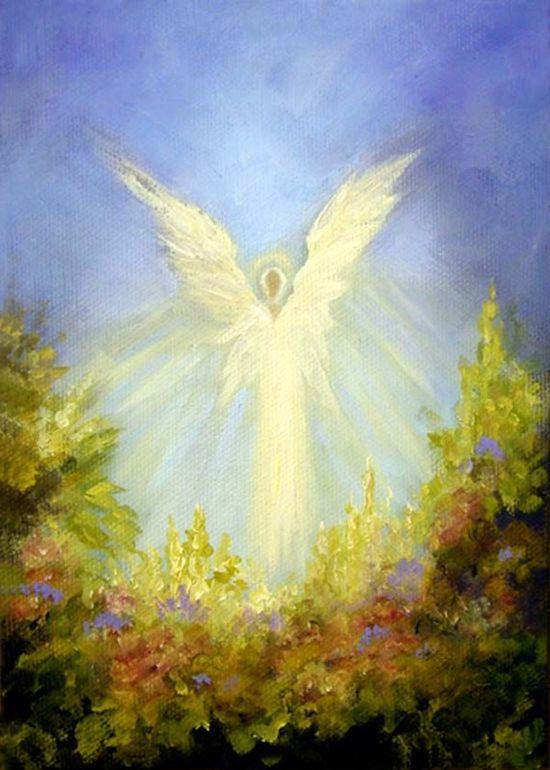 """""""Angel's Garden"""""""