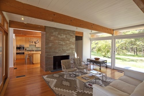 Mid Century Modern Home Decor Design, Pictures, Remodel, Decor and Ideas - page 55