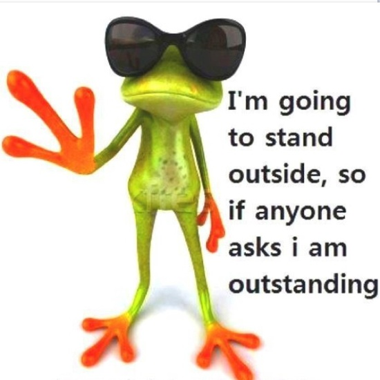 Cool froggie!