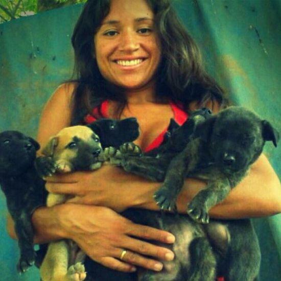 Babies (DOG)