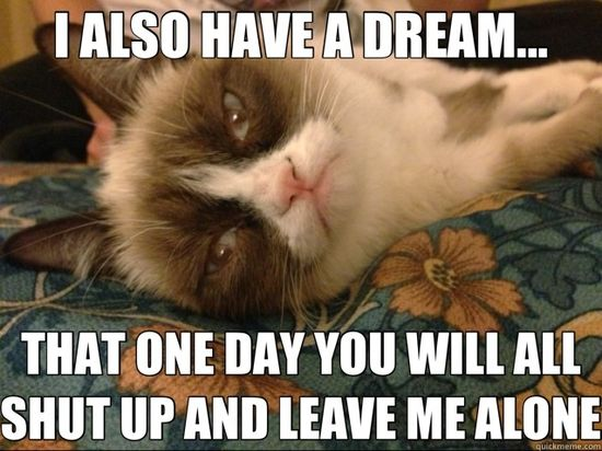 #grumpycat #grumpy #tard #cats #kittens #animals #pets #funny #cute