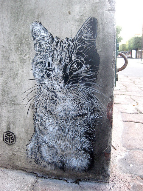 Paris (Vitry-sur-Seine).  Street art 000