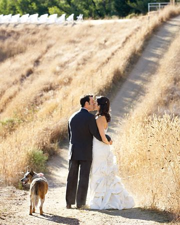 Satoko and Alex's ranch wedding included their pooch
