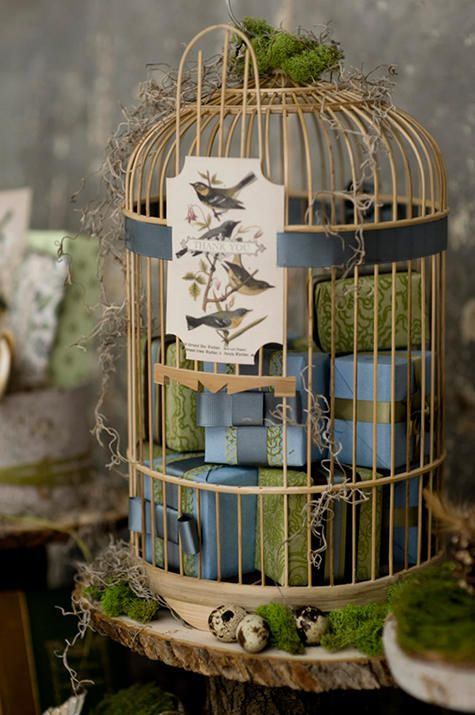 bird cage for gifts at wedding