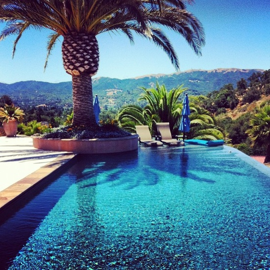 Infinity pools are always a win, the palm tree is like icing on a cake #bliss #pools   Pinned via pools by JJ Reid