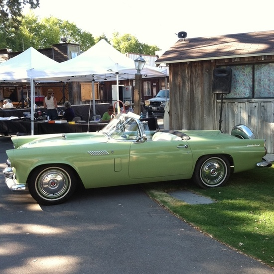 1956 Thunderbird