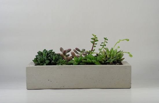 A simple cement planter filled with succulents.