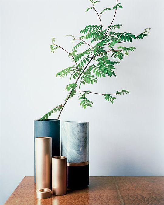 Garden Inspiration,