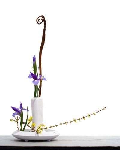 Ikebana, the traditional Japanese art of flower arrangement