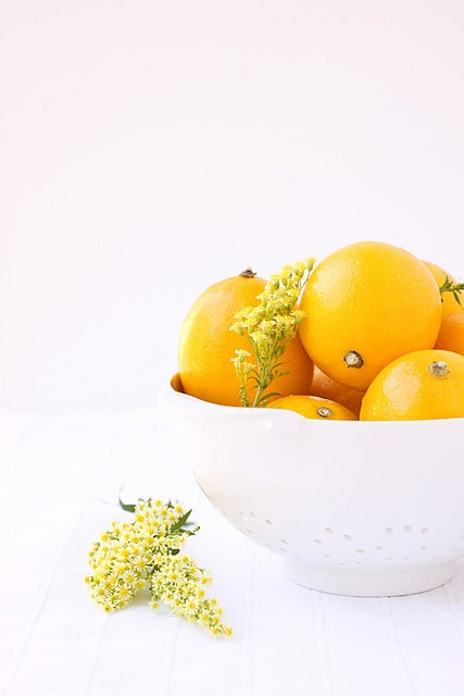 food styling :: myer lemon...