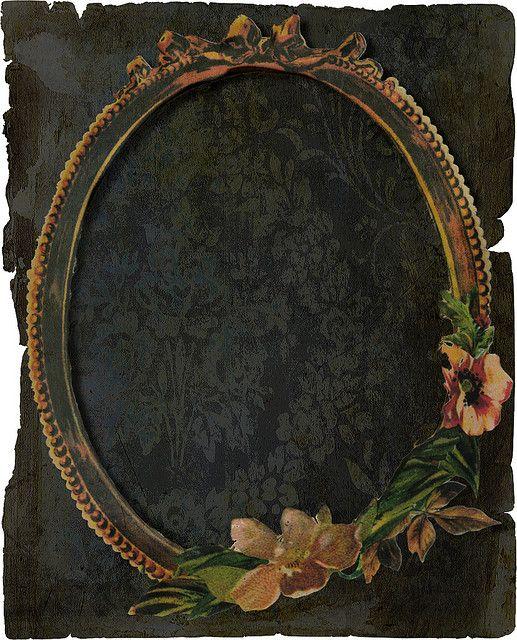 vintage wallpaper frame