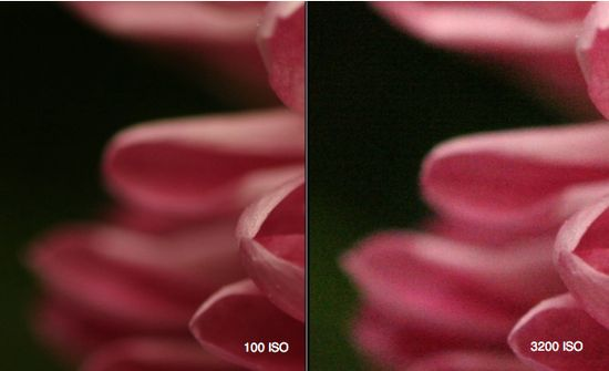 How to Choose the Right ISO for your Digital Photography