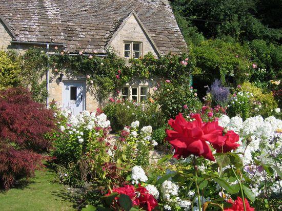 Beautiful cotage garden