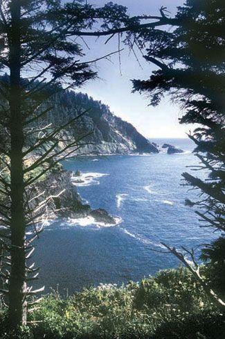 Cascade Head in Oregon