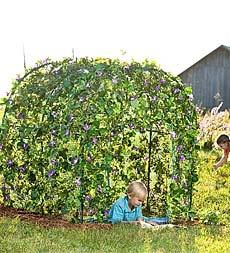 GardenFort