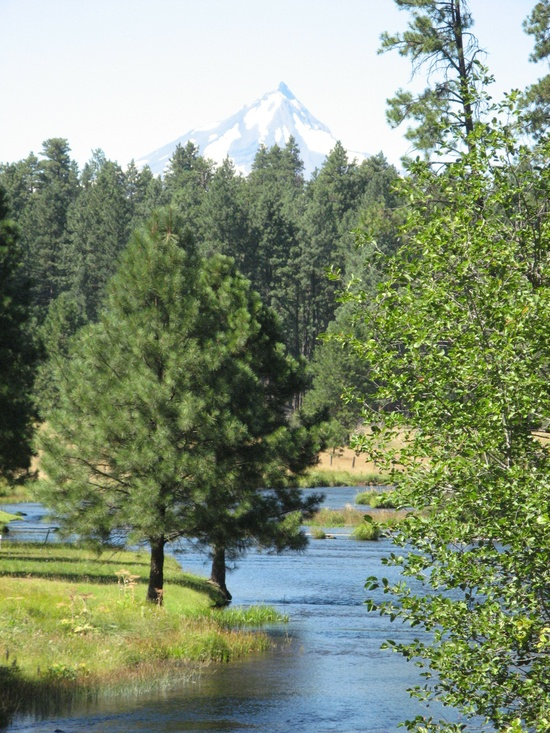 The Metolius River - Central Oregon