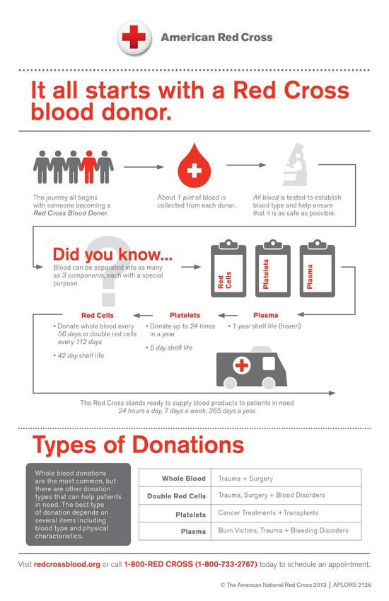 Blood Donation Process Explained