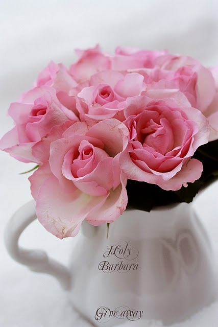pink roses in a white china creamer