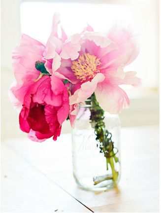peonies - my favorite!