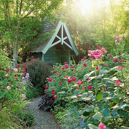 Garden shed, path & flowers