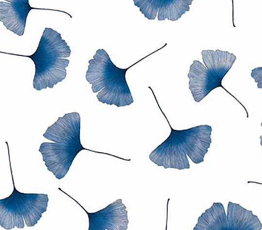biloba in blue & white // wallpaper