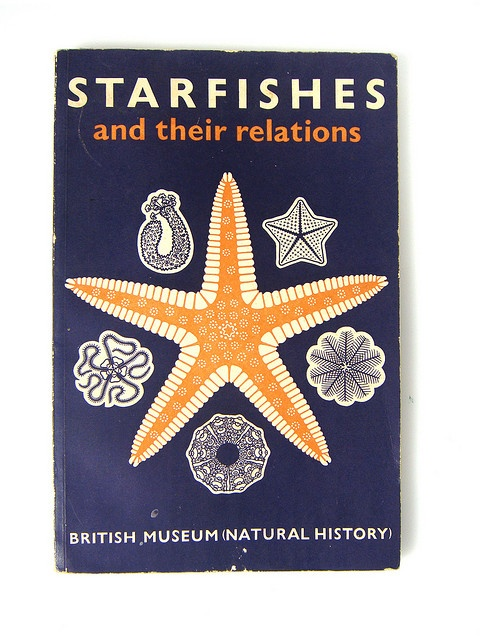 Starfishes and their relations book cover