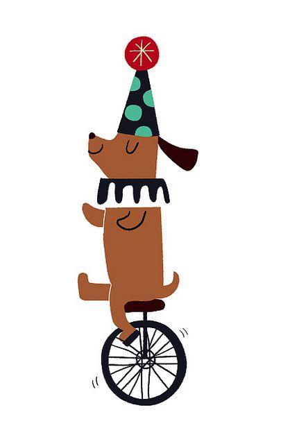 Velocipede~circus dog