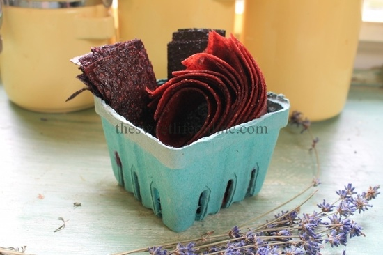 Make your own Fruit Leather.