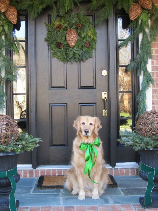 beautiful holiday photo with golden retriever