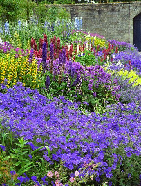 Floors Castle garden, Scotland