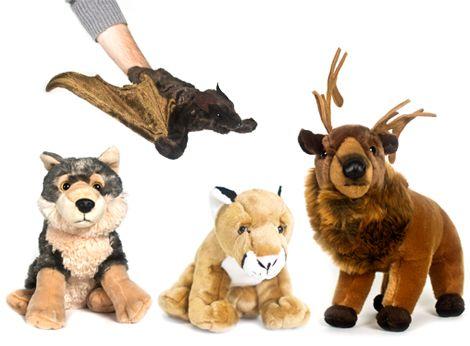 Sierra Club - adopt a wild animal (I love them all!!)