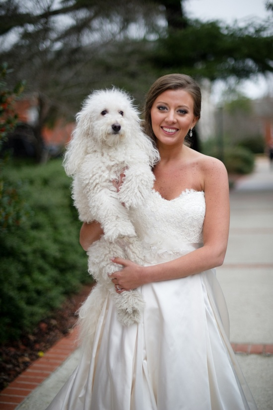 Bride and her dog. Doin it! Both of our dogs are totally getting dressed up and groomed.
